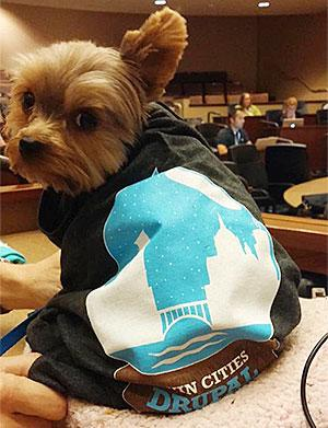 dog wearing twin cities drupal camp shirt